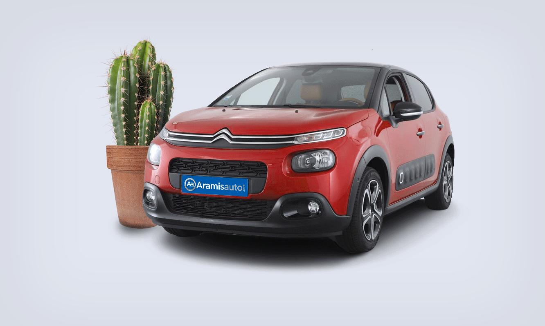 Une Citroën C3 avec un Cactus en pot !